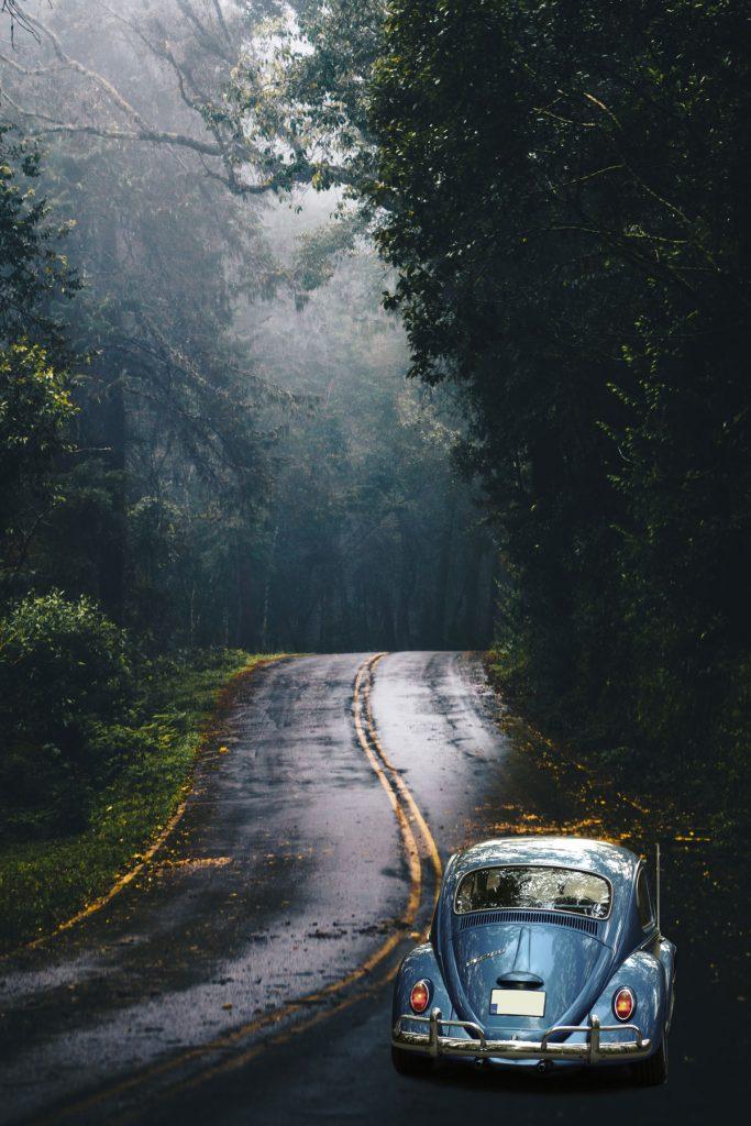 PIXimperfect car forest composite